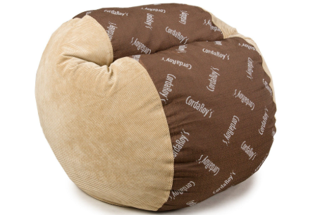 Incredible Cordaroys Review 2019 The Convertible Bean Bags With A Bed Dailytribune Chair Design For Home Dailytribuneorg