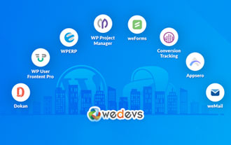 Wedevs Review | Marketize Your Business Reach Globally With WeDev Software